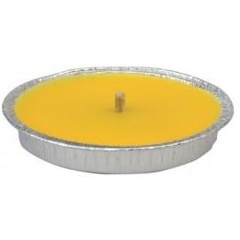 Citronella in vaso di alluminio